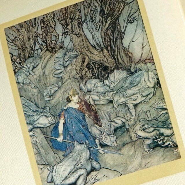 JAMES-STEPHENS-IRISH-FAIRY-TALES-1920-ILLUSTRATED-BY-ARTHUR-RACKHAM-SIGNED-174038876723-6